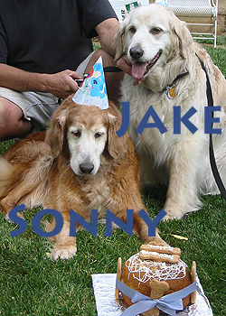 Sonny's Birthday Party